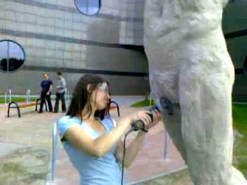Akcja Wykastrowania Rzeźby W Zielonej Górze