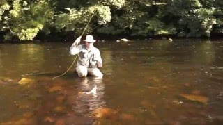 A Half dozen deadly dry flies clip
