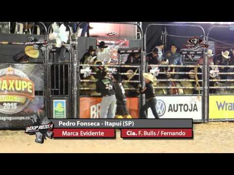 Final Rodeio Em Touros Em Guaxupé - MG - 2015