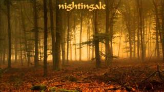 Watch Nightingale Scarred For Life video