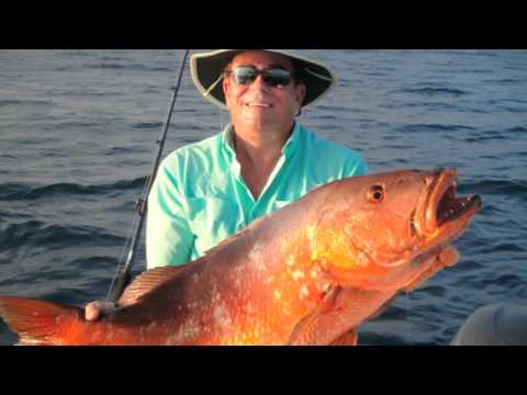 (Sport Fishing Costa Rica)