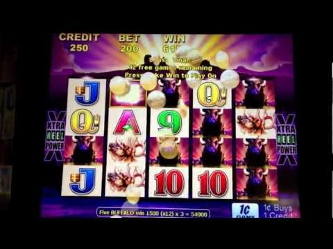 BUFFALO Slots BIG WIN!!! - 423X bet / $847.50 - at the D Casino in Downtown Las Vegas