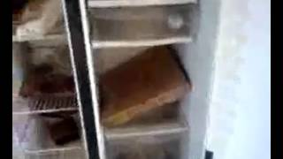 1 Year worth of rotten food in fridge - eww eww ew ewewewewew ewew