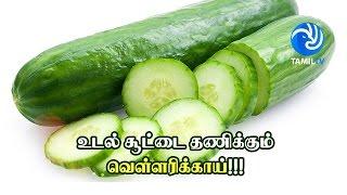 Cucumber Body heat conttol