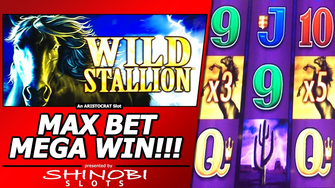 goldfish slots max bet with huge win