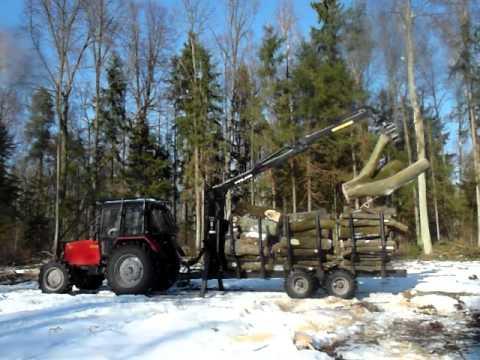 Palms 680: Żuraw leśny w akcji