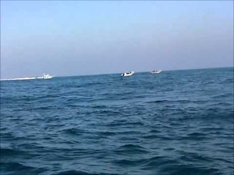 Israeli navy harasses Palestinian fishermen, international observers off Gaza coast