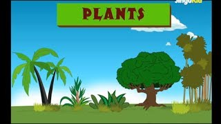 Learn about Plants | Easy Learning for Children | Nursery Rhymes | Preschool | Kids | Kindergarten