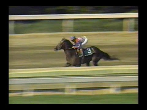 1996 Massachusetts Handicap: ESPN Broadcast