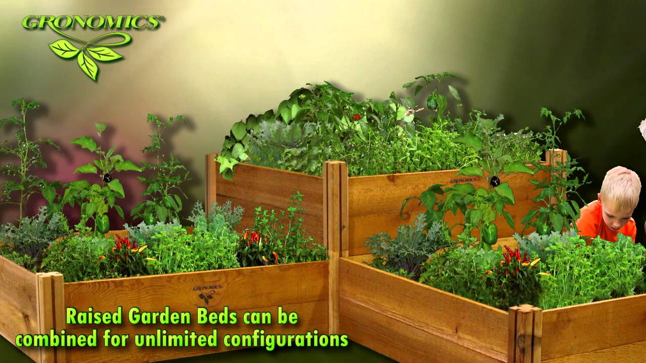 Why Raised Bed Vegetable Garden