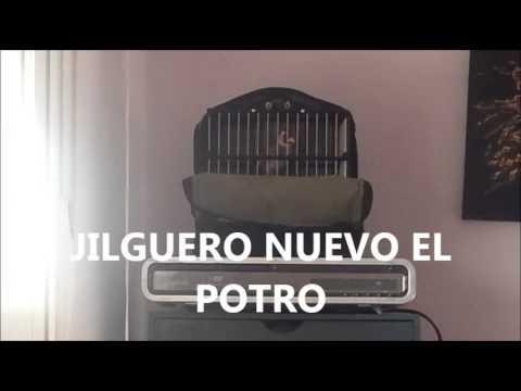 JILGUERO NUEVO EL POTRO