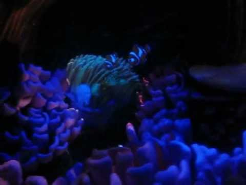 Finding Nemo Ride at Disneyland