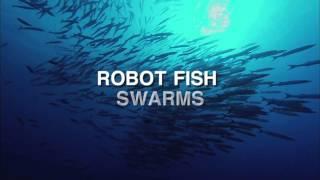 Pesci robot per combattere i cambiamenti climatici
