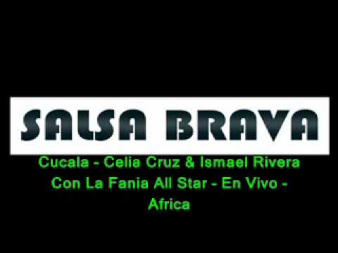[salsa Brava]cucala - Celia Cruz & Ismael Rivera Con La Fania All Star - En Vivo - Africa video