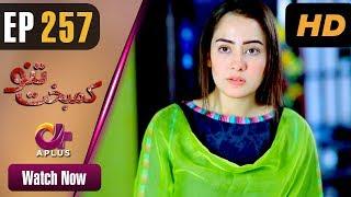 Kambakht Tanno - Episode 257 | Aplus ᴴᴰ Dramas | Tanvir Jamal, Sadaf Ashaan | Pakistani Drama