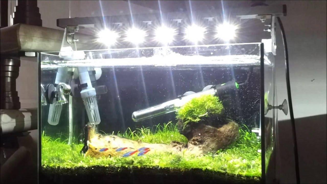 Освещение аквариума своими руками: мощность ламп, их тип 88