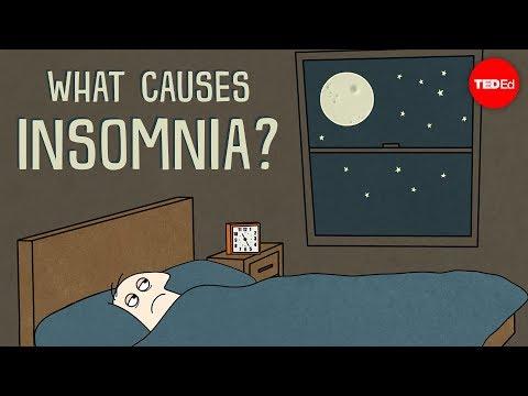 Ted Ed – Insomnia