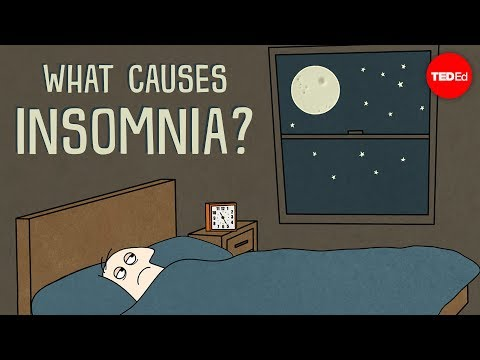 What causes insomnia? - Dan Kwartler