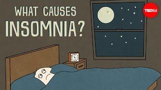 What causes insomnia? - Dan Kwartler