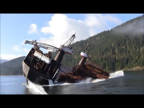 Ship Unloading Timber In Canada