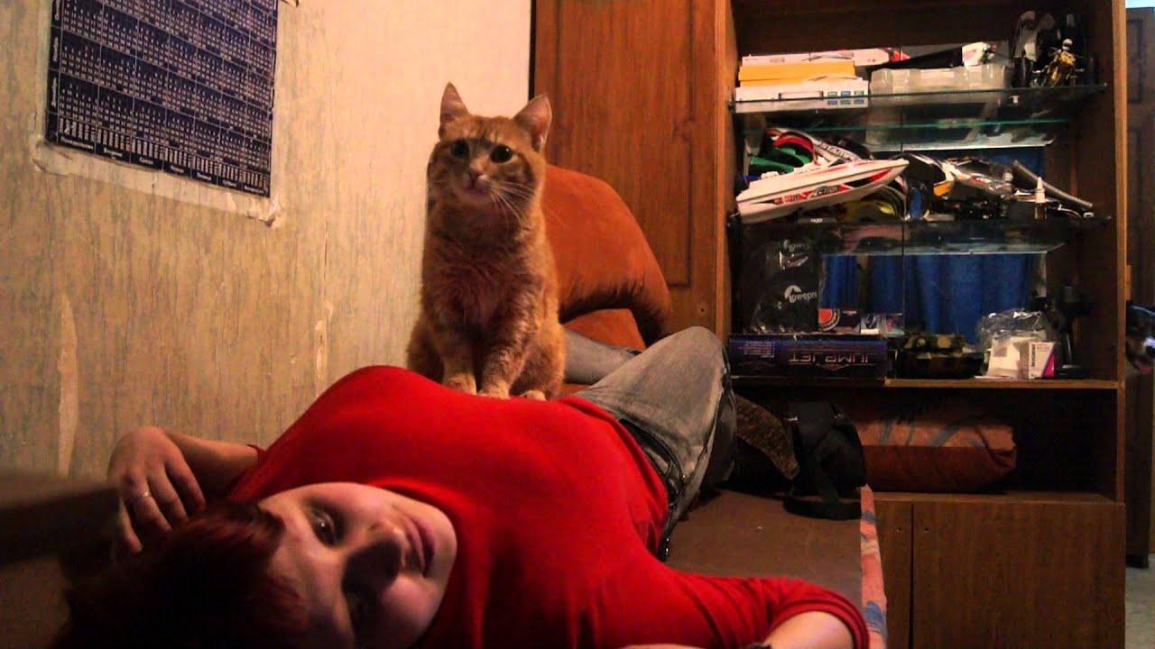 Как сделать чтобы котенок не сосал кошку