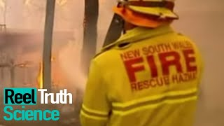 Inside The Wildfire | Season 1 Episode 1 | ReelTruth Science