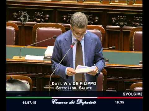 Roma - Camera - 17^ Legislatura - 461^ seduta (14.07.15)