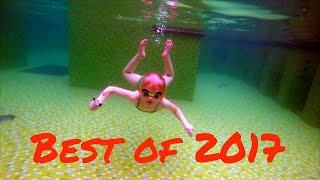 Best Swimming Videos of 2017
