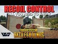 GUIDE: How to CONTROL YOUR RECOIL in PUBG (Mouse Camera)