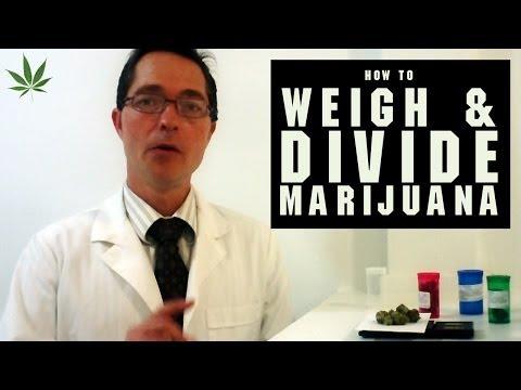 How to Weigh and Divide Marijuana Tricks & Tips w/ Bogart #15