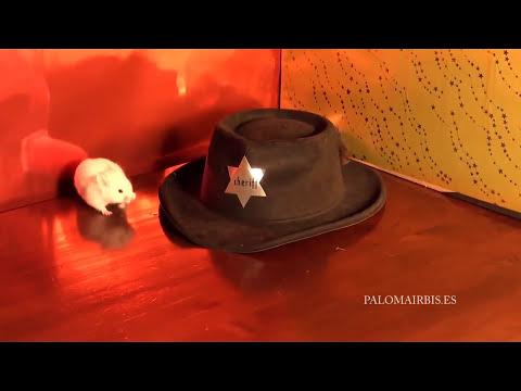 EL SOMBRERO DEL SHERIFF
