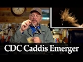 Willy Self: CDC Caddis Emerger