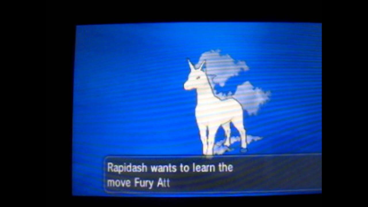 Mega Evolved Rapidash Evolving Into Rapidash