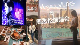 Las Vegas VLOG⚡️去看周杰伦演唱会了!!!!/ 结婚7周年anniversary❤️/ 逛街逛到扁平足🙄️