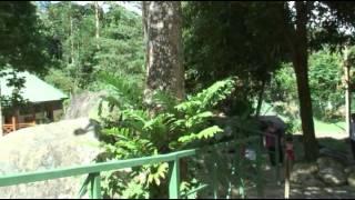 Kota Kinabalu @ Poring Hot Spring.mp4