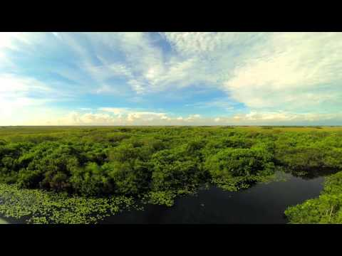 The Sunshine State in 60 Seconds