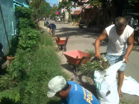 Barangay Mabini Extension/Reynaldo D. Ando - Operation Linis Project/Clean and Green Program