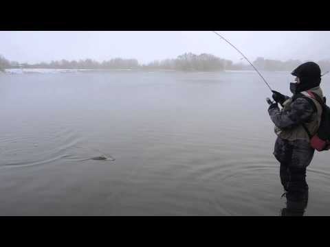 ловля уклейки на борисовских прудах