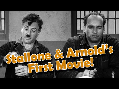 Arnold Schwarzenegger and Sylvester Stallone DID Make Another Movie Together!