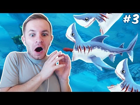 НЕ ЛЕЗЬ, ОНА ТЕБЯ СОЖРЕТ (Сельдевая акула) | Hungry Shark World #3