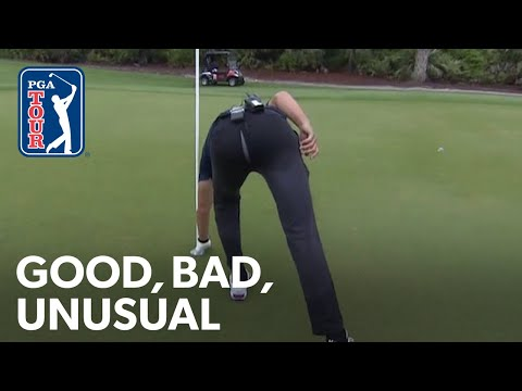 Tiger's next appearance? Brady's busted britches and Phil's hellacious seeds