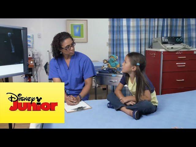 Doctora Juguetes: Escuela de Medicina pregunta