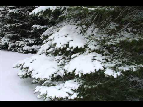 Ost Tree Of Heaven - Snow In Japan video