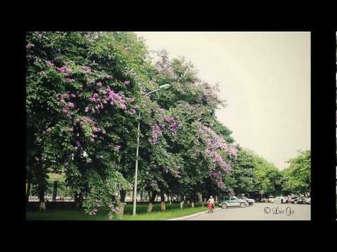 Hanoi University Of Science And Technology.avi
