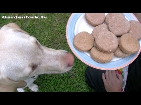 Dog Biscuit Treat Recipe : GardenFork.TV