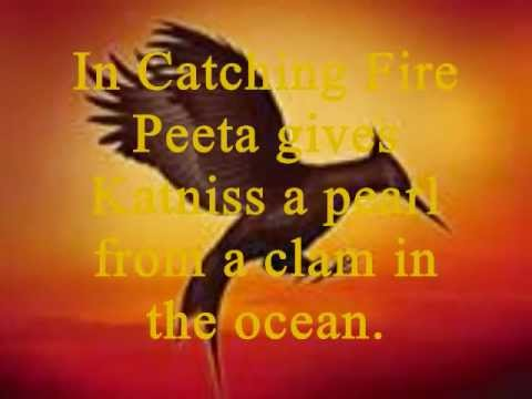 Do You Know Catching Fire? (Catching Fire Quiz)