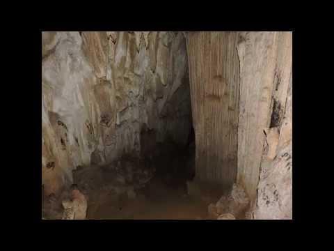 Cueva del Pato, El Pilar (Población de Santa Ana) Municipio Benítez, Estado Sucre.