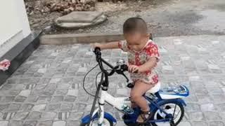 Bí bo đi xe đạp ba bình kéo