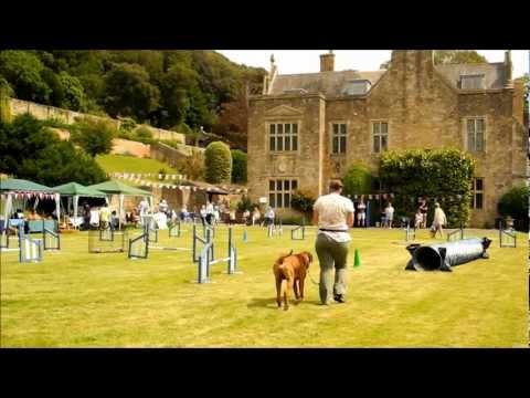 Daybreak Dog Training Demonstration... at Clevedon Court  21st July 2012.