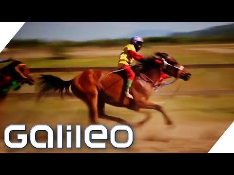 Die Kinder-Jockeys aus Indonesien - Je leichter desto schneller | Galileo Lunch Break